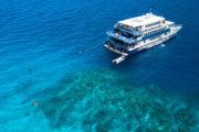 Reef Quest