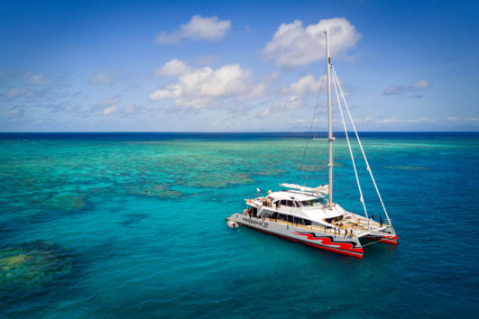 Snorkelling & Diving Day Trips