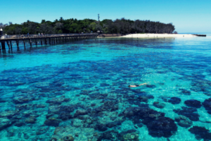 Drtours tour category great barrier reef